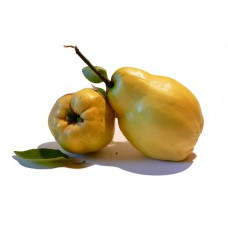 QUINCE (Costa Rica) 500g